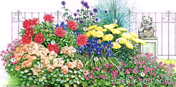 Дизайн цветников схема